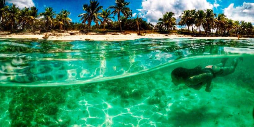 Snorkel Catalina