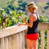 Monkey Land Punta Cana